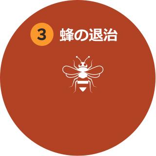 3.その場で蜂とハチの巣の退治をいたします。