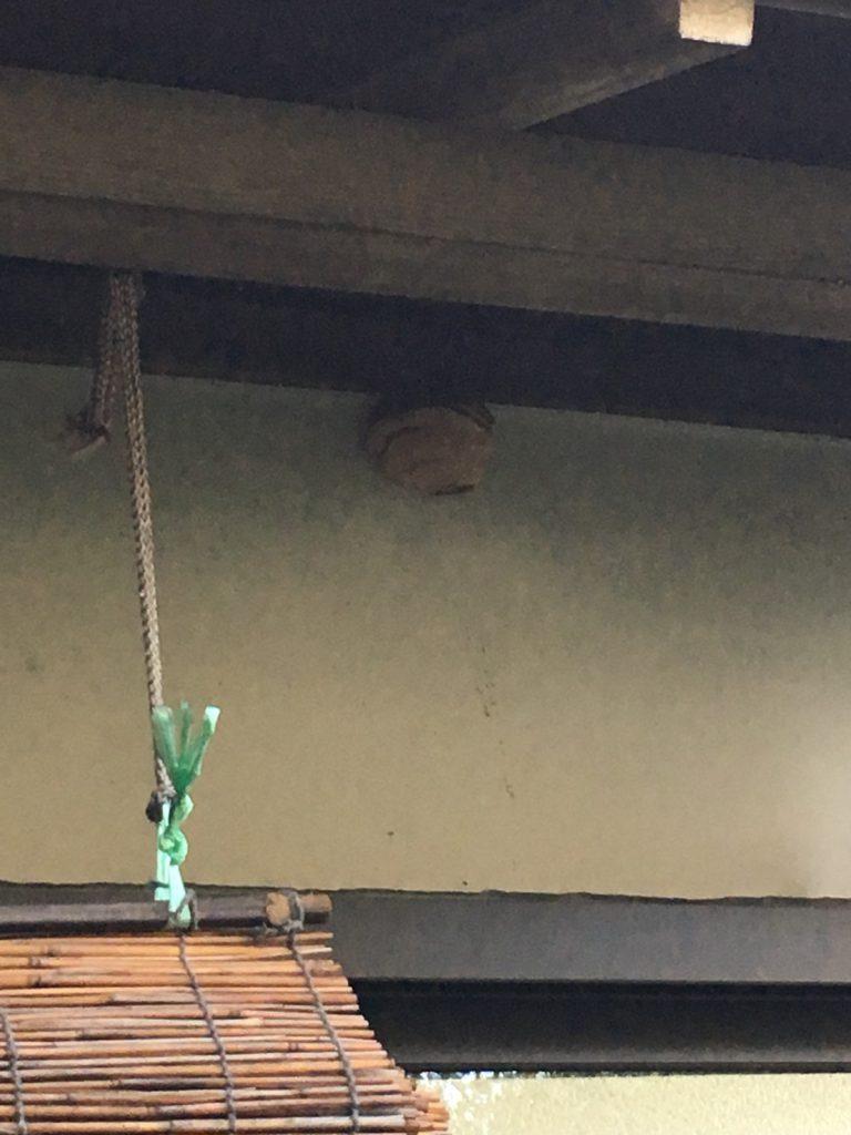 【千葉県柏市常盤台】8月15日、スズメバチの蜂の巣駆除依頼がありました【場所:1階軒下】
