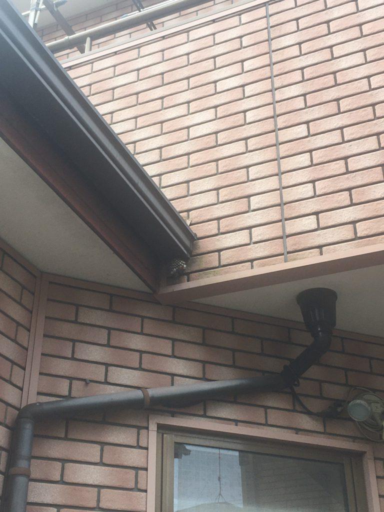 千葉県我孫子市都部の蜂の巣駆除現場