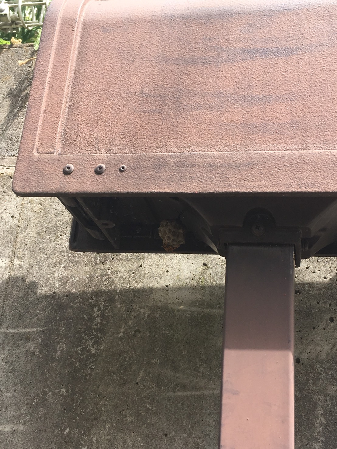 千葉県柏市藤心の蜂の巣駆除現場