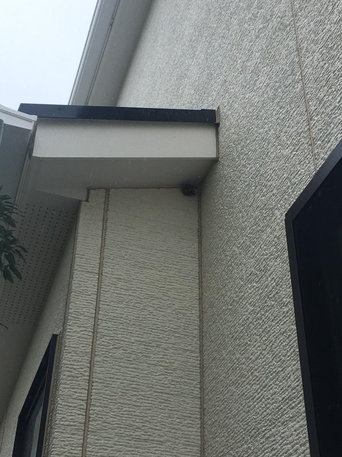千葉県柏市柏の葉の蜂の巣駆除現場