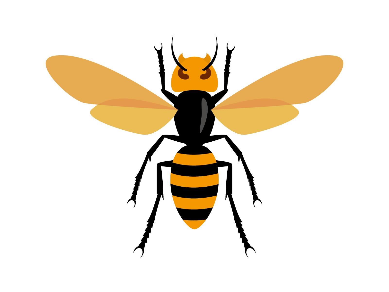 蜂に襲われて死亡したニュース
