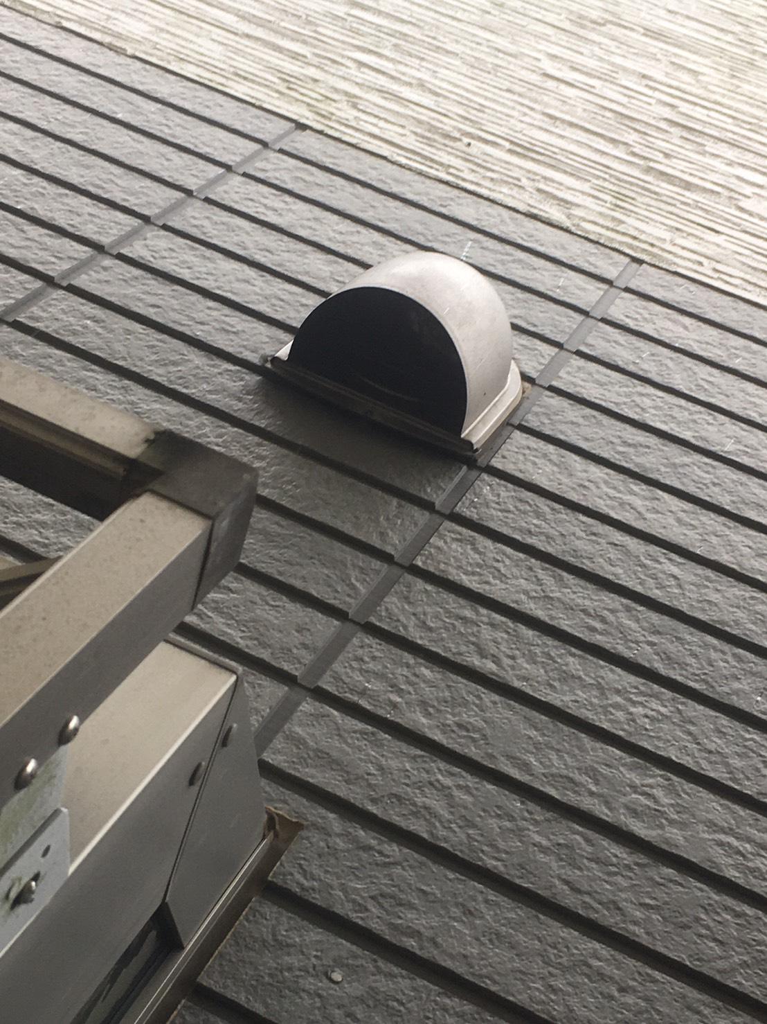 千葉県柏市豊住の蜂の巣駆除現場