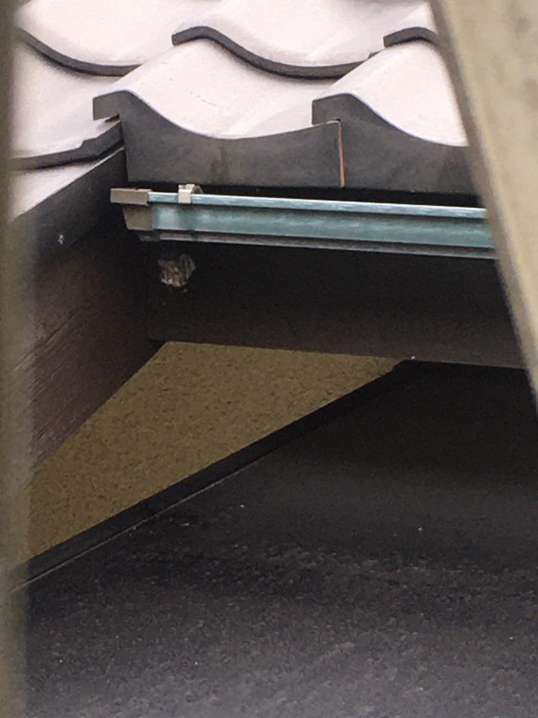 千葉県柏市日立台の蜂の巣駆除現場